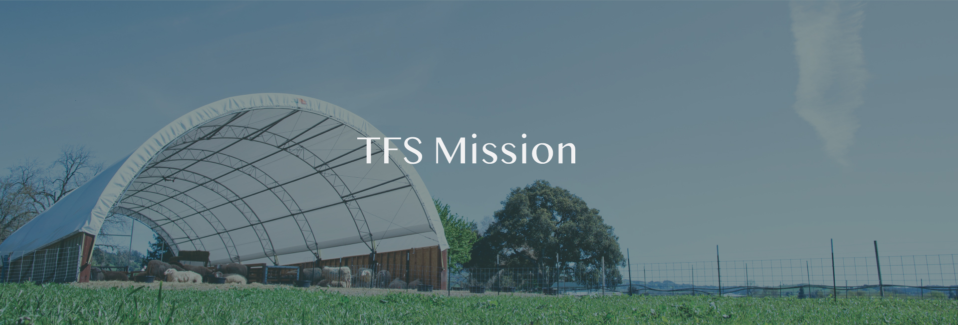 TFS Natural Home Mission